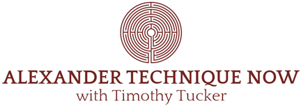 Alexander Technique Now Logo
